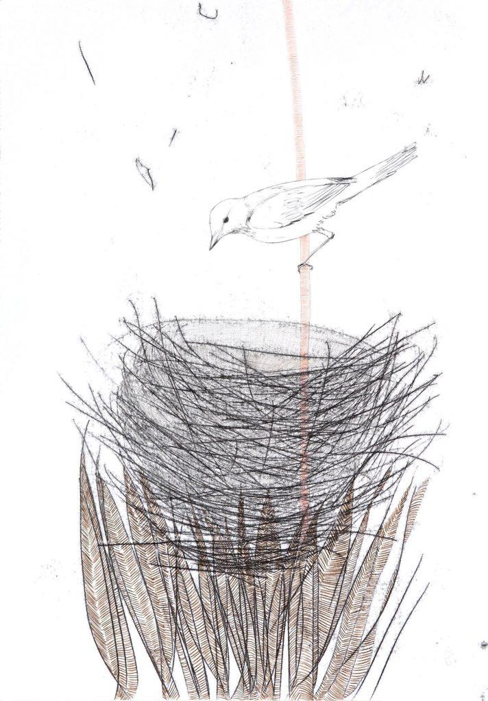 Der Vogel vergaß sein Lied